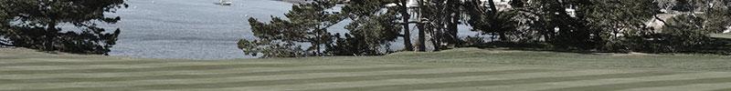 ゴルフ精通ナレッジ